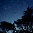 Star trails — Stock Photo #1823254
