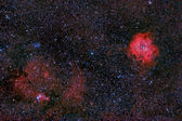 Rosette and cone nebulae — Stock Photo