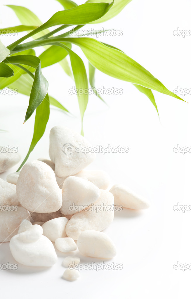 White stone with green leaves — Stock Photo #1853937
