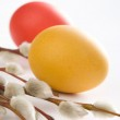 Two easter eggs and catkins — Stock Photo