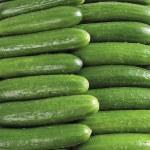 Fresh cucumbers — Stock Photo