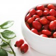 Red dog rose hips. Briar — Stock Photo #2028550