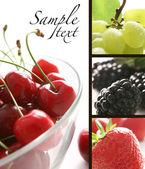 Fruit collage — Stock Photo