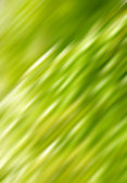 Abstract green wind — Stock Photo