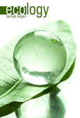 Globe made of glass on green leaf — Stock Photo