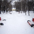 Benches in snow — Stock Photo #1782235