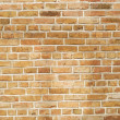 Brown brick background — Stock Photo