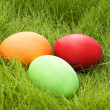colored eggs — Stock Photo