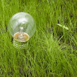 Light bulb on grass — Stok fotoğraf