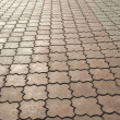 Ornate paving stones — Stock Photo