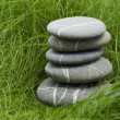 Stones in grass — Stock Photo