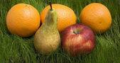 Ripe fruits on grass — Stock Photo
