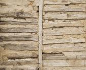 Log wall — Stock Photo