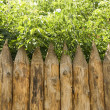 Royalty-Free Stock Photo: Wooden fence and trees