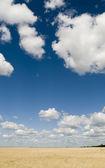 Prado y hermoso cielo — Foto de Stock
