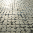 Wet ornate paving stones — Stock Photo