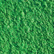 Foto de Stock  : Artificial lawn