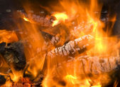 Burning firewood — Stock Photo