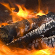 Stock Photo: Burning firewood