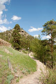 Pathway leading through a summer mountain landscape — Stock Photo