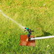 Water sprinkler — Stock Photo #2597366