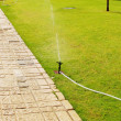 Water sprinkler — Stock Photo #2604949