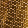Bee wax clay — Stock Photo