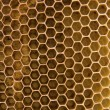 Stock Photo: Bee wax clay