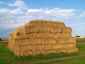 Bale of haystack — Stock Photo