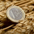 Stock Photo: Euro and ears of wheat