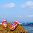 A pair of flip-flop sandals on a rock — Stock Photo #1804395