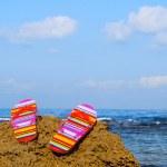 Flip-flops — Stock Photo #1804395