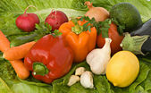 Different vegetables — Stock Photo