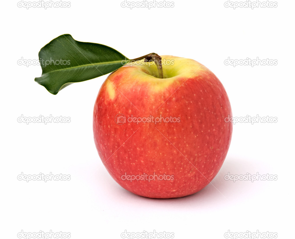 Red apple isolated on white background — Stock Photo #1851349