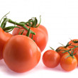 Closeup of branch of tomatoes - Stock Photo