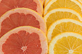 Slices of orange and grapefruit — Stock Photo