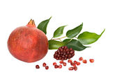 Pomegranate and arils — Stock Photo