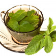 Green tea with mint - Stock Photo
