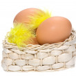 Brown eggs with feathers in basket — Stock Photo #1813439