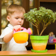 Little gardener boy — Stock Photo