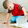 Stock Photo: A little boy reads a book