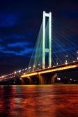Southern bridge at night. Kyiv, Ukraine. — Stock Photo