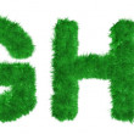 Alphabet of lush green grass — Stock Photo