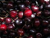 Cherry.background — Stock Photo
