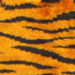Tiger stripe  texture — Stock Photo