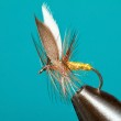Invicta traditional trout fly — Stock Photo