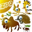 Zoo vector set: hoopoe, jerboa, echidna, zebu, cockroach — Stock Vector