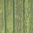 Backgrounds, Wooden fence - Photo