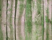 Planos de fundo, cerca de madeira — Fotografia Stock