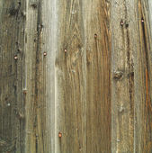 Backgrounds, Wooden planks — Stock Photo